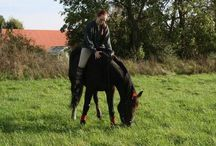 Heste pige / Rart og være sammen med så varmer og store dyr.  Mit mål er jeg ejer en selv.