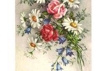 obrazky kvetov