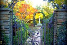 Двери окна ворота