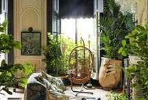 Jungle Inspired Rooms