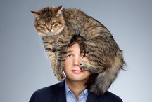 people with cats on their heads
