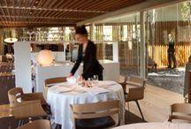Restaurantes / Seleccion de restaurantes con reportajes de Hitcooking