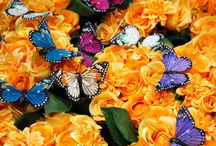 Fiori piante e farfalle artificiali / #Fiori #piante e #farfalle artificiali allestiti all'interno dell'ingrosso per la Primavera/Estate 2016.