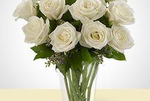 Arranjos de Flores / Lindos Arranjos de Flores!
