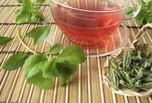 Stevia- gezond en heilzaam