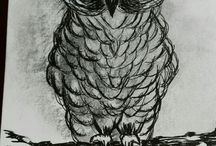 My own drawings in charcoal, pen & ink etc