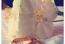 SCENES FROM A WEDDING / Wedding photos
