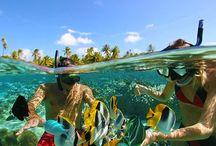 Snorkeling Ideas & Tips