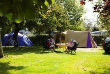 emplacement de tentes, camping du verger