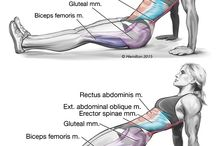 Cvičení Fitness