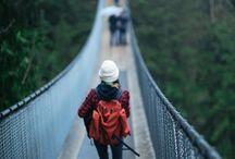 Bridges, my fear