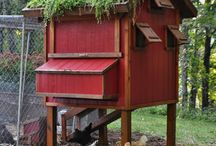 On the Farm / Chicken coops Barns animals