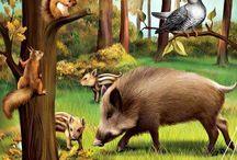 Προσ. τάξη - Ζώα