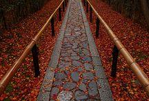 Garden pathways / Ścieżki ogrodowe