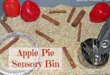 preschool sensory bins