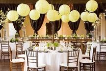 • Party & Wedding Ideas