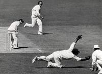 Gold Star Cricketer