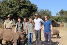 Prince Harry at Khulula Care for Wild / HRH Prince Harry visited Khulula Care for Wild on 7th August as part of his conservation-focused itinerary. He spent several hours getting to know the staff and volunteers at Khulula - as well as the rhino!