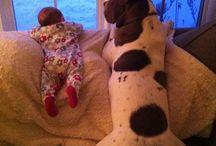 myka de baby en alicia de hond