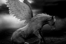Pegazus,Unkiornis,Centaur