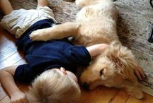 Baby, and doggy