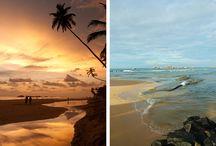 *Sri Lanka dromen*