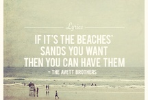 The Avett Brothers / by Danielle