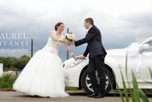 Kedvenc esküvők