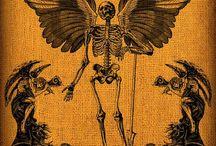 Esqueletos e esdruxulices