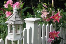Picket Fences / by eva fabian
