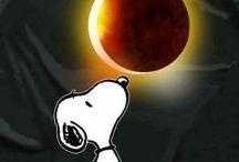 Solar eclipse 2017 Fernie