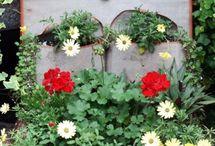 Gardening / by Laura Traore