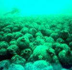 Marmara island underwater archeology