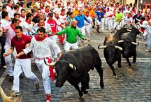 The Running of Bulls-Spain's Popular Festival / This board contains article on Spain's popular festival called The Running of Bulls, here you will get info about the significance, history of this festival. Moreover, if you want to buy package for Spain, you can also do so.