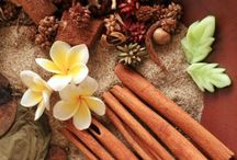 The Scented Home / Make your home smell good!  potpourri, simmering scents, candles, wax tarts and natural scents.