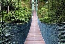 Beautiful Borneo / Inspiring travel images from Borneo