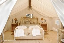 Glamping / Luxury camping at it's finest / by debthompson