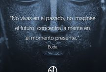 QUOTES y frases