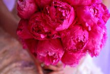 All about peony bouquet