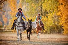 Ranchs aux USA / Séjours équestres et conduite de troupeaux (horse drive et cattle drive) - http://www.randocheval.com/Programmes/Pages-Pays/USA-ranchs.html