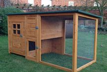 Chicken Coops / Inspiring ideas for all bird keepers