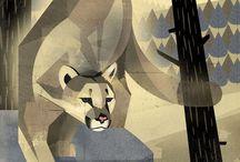 Animals - Cats - Lesser non-domestic species / Lions, tigers, leopards, jaguars, cougars, servals, etc
