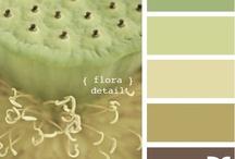 Colors / by Melissa Pollman