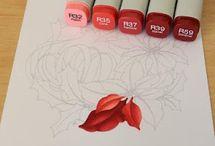 Coloring, writing, drawing