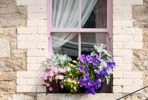 Janelas | Windows / Para saber mais acesse: www.carolvayda.com.br