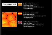 Fernando Fons Curto / Cooperativa de Cítrics de Tivenys