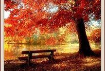 őszi képek