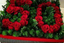 Dobozos virágok
