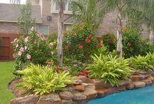 Outdoor Garden and Lanscape ideas