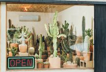 Plant Store Fronts